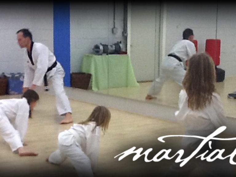 Martial Arts 2016